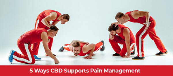 5 Active adult males in workout poses and suffering from post-work out pain. How CBD supports pain management. Buy CBD for pain online. Botany.bio CBD store.