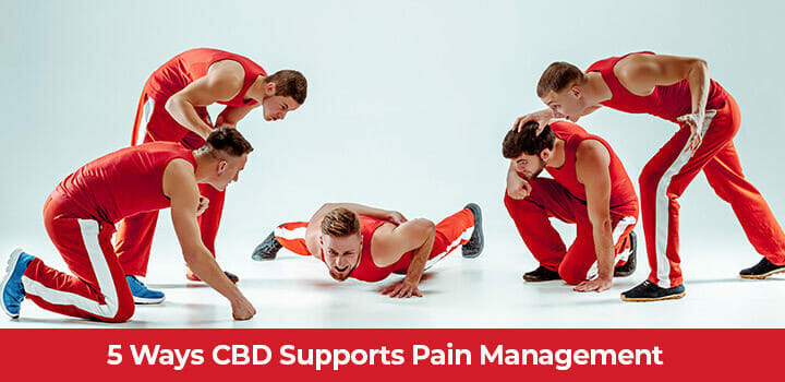 Top 5 Benefits of CBD for Pain